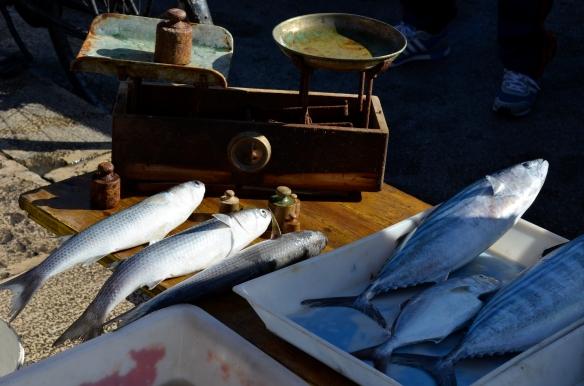 Fish market Bari